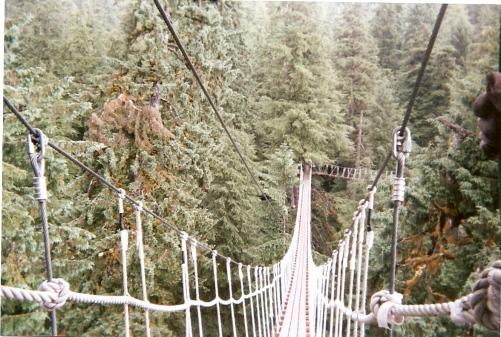 Ziplining Bridge Alaska