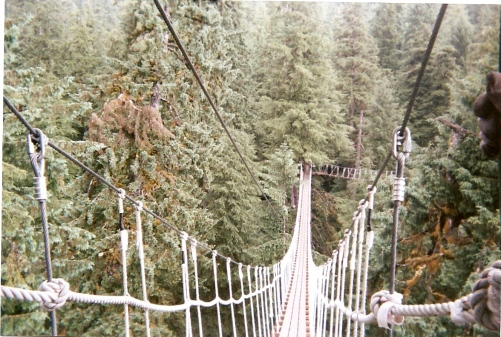 Ziplining Bridge Alaska