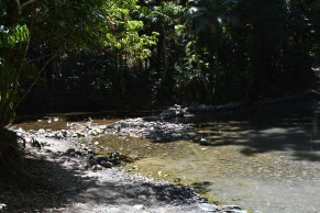 Emmagen Creek 3