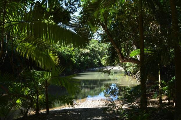 Emmagen Creek 4