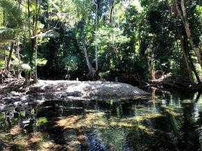Emmagen Creek 2