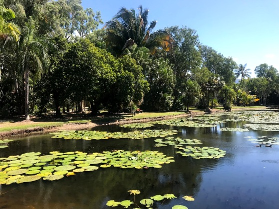 Flecker Botanic Gardens Cairns Pond