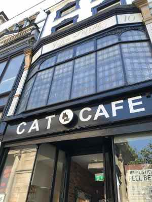 Cat Cafe Liverpool Exterior