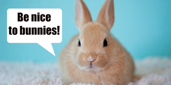 Be Nice to Bunnies